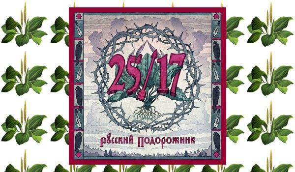 25 17 АЛЬБОМ ПОДОРОЖНИК СКАЧАТЬ БЕСПЛАТНО